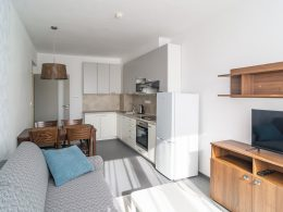 Obývací pokoj a kuchyň v apartmánu 2+kk